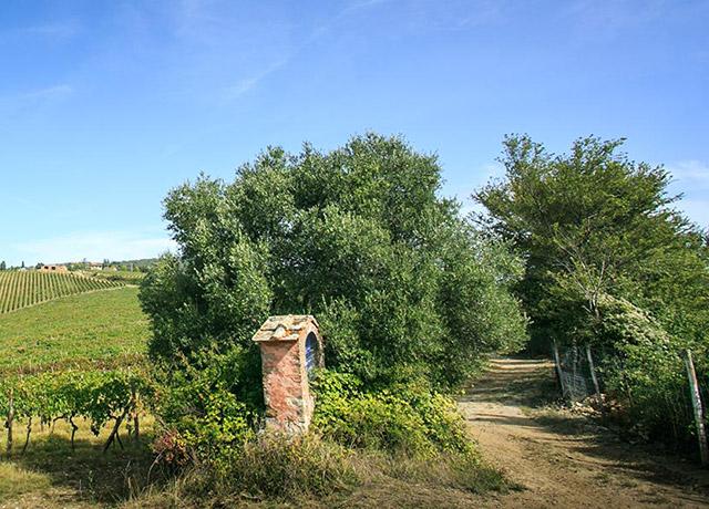 chianti-castelvecchi-9-640